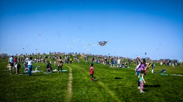 kite festival chicago 2015